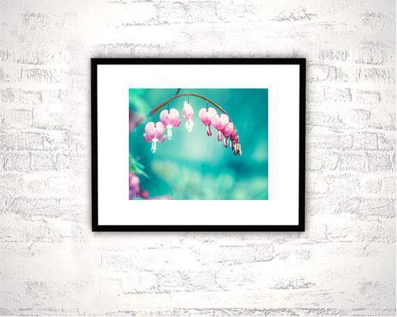 Aqua Pink Flower Photography - 8x10 Bleeding Heart Print - Teal Floral Wall Art,