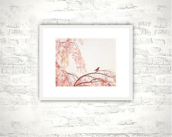 Pink Photography - 8x10 Bird Print - Nature Pastel Nursery Art Photograph