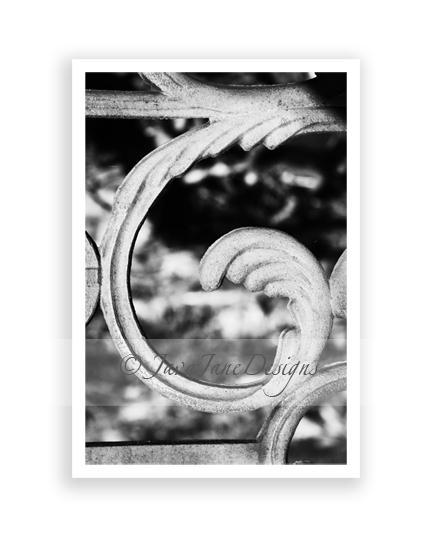 Letter g alphabet photography individual 4x6 black and white photo for name