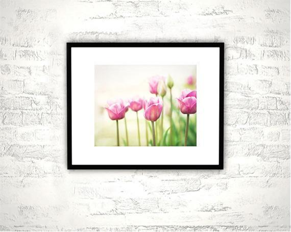 Pink Flower Photography - 8x10 Tulip Print - Floral Green White Nature Wall Art