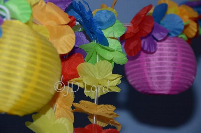 Bright Cheerful Colors of Lights & Lei 4 x 6 Fine Art Photographic Print