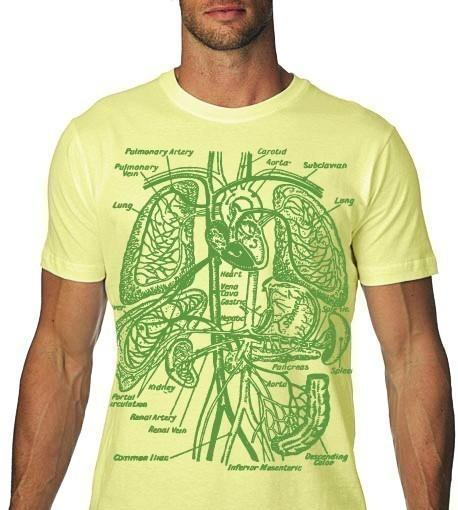 Organs TShirt Vintage Anatomy Tee MENS   nonfictiontees
