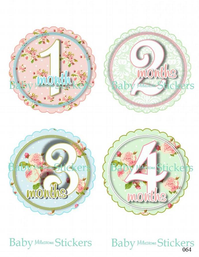 Baby Girl Scallop Roses Monthly Bodysuit Stickers Keepsake Shower Gift Month