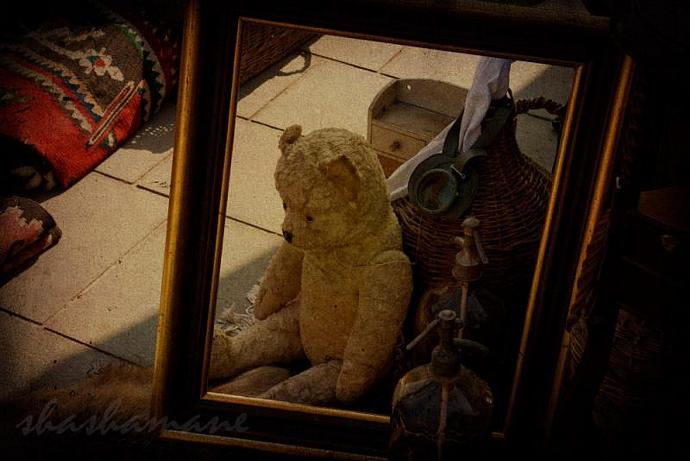 "Rescue me - Lost teddy bear needs loving home - 5 x 7"" fine art photography"
