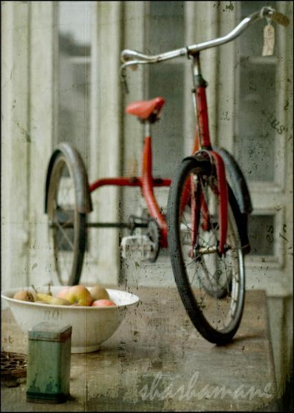 "Amelie's bicycle - french movie mood trike - 7 x 5"" fine art photography print"