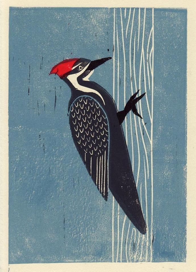 PILEATED WOODPECKER Original Linocut 5 x 7 Wood Block Illustration Art Print