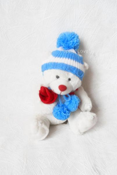 Pet Dog Puppy Cat Winter Warm Knitted Pom-pom Hat & Scarf  Blue Collar Clothes