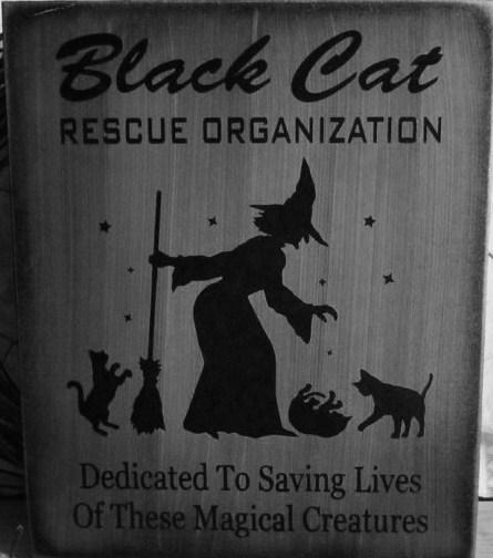 Black Cats Halloween witch decorations rescue organization Cat art signs