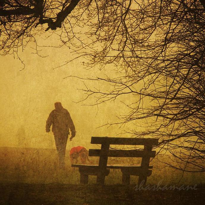 "Fading away - Foggy mid-winter scene 5 x 5"" fine art photography print"