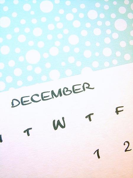 12 Month 2011 Vertical Calendar in Teal