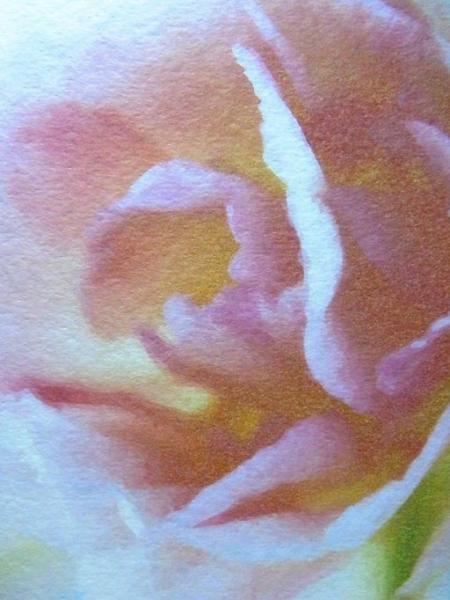 Set of 8 Rose Blank Flat notecards