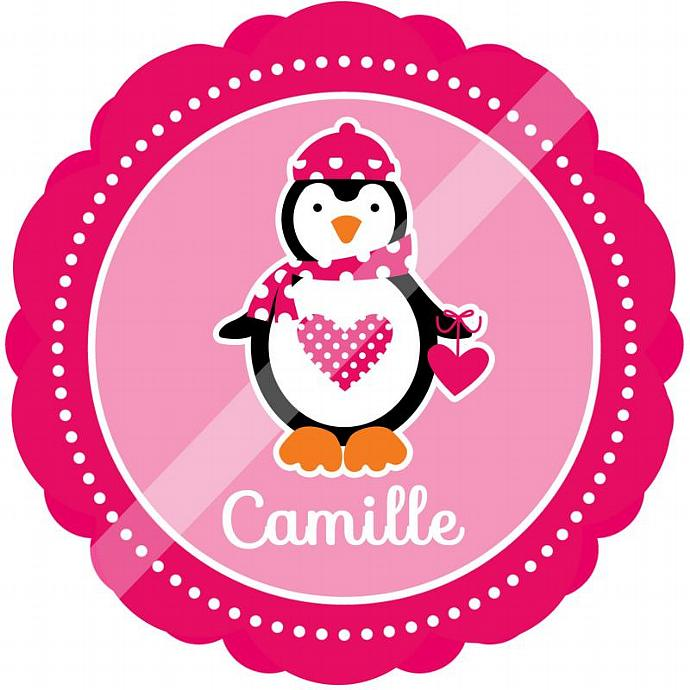 Personalized Iron-On Transfer for Kid's T-shirts. Digital Image. Camille