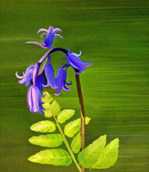 Blue Bells- fine art, mixed media, digital art