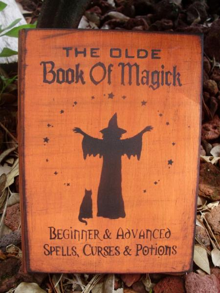 Primitive witch Halloween Book of Shadows witchcraft wiccan Witches Spells book