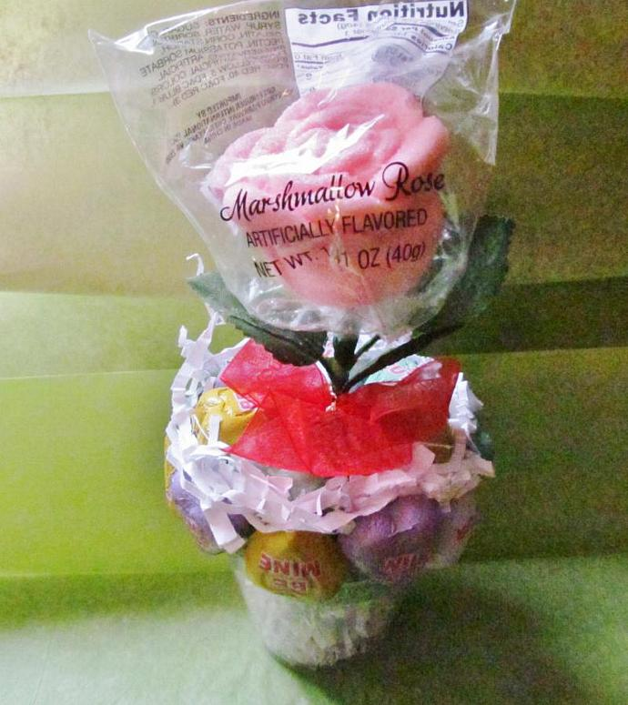 Valentine Marshmallow Rose Plant - Made to Order