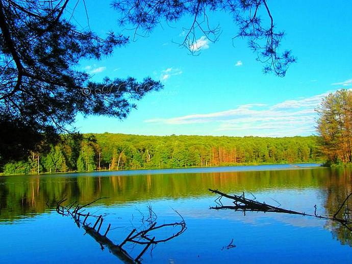 Stoney Pond - Nature Photography 8x10