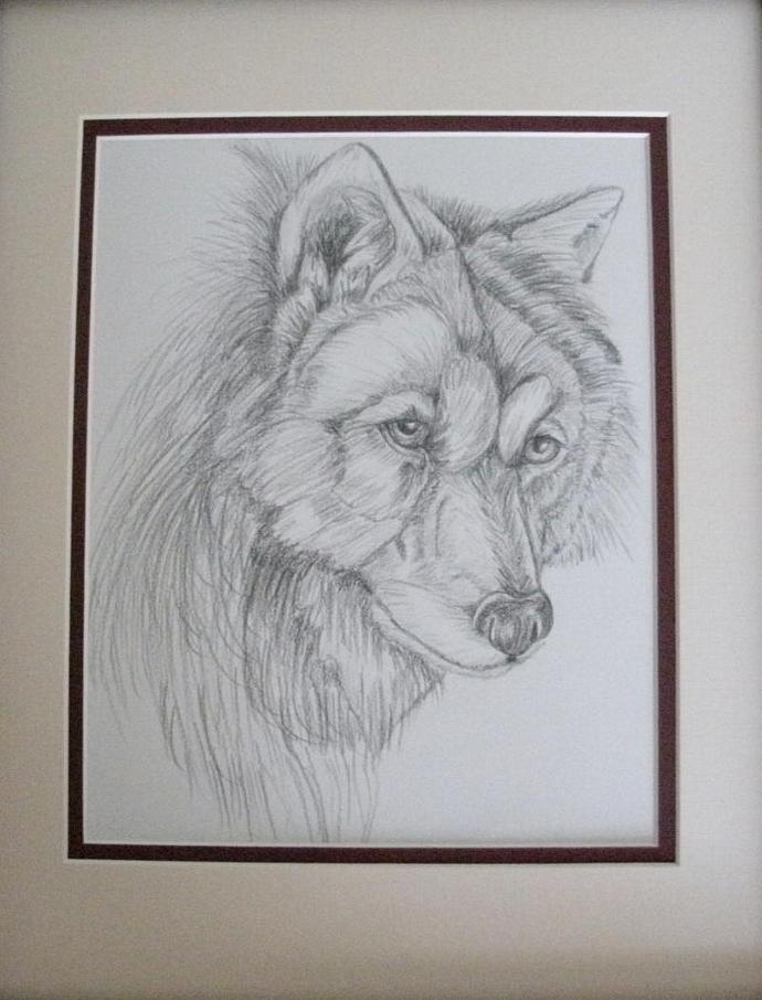 Wolf Drawing, original, fine art, realism, animal, wildlife, woodland, rustic,