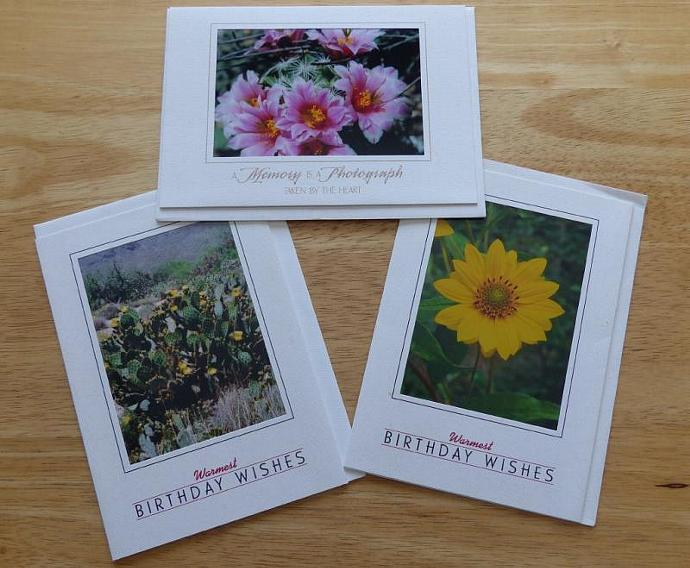 Collection of 3 photo cards,  Flowers greeting cards, nature greeting cards