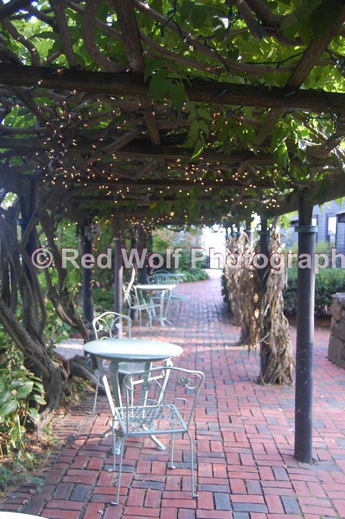 Grapevine Roof Photo Print