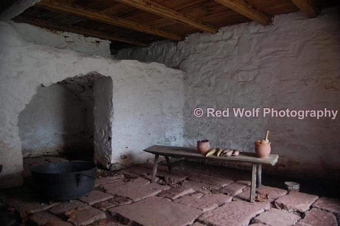 The Root Cellar Photo Print