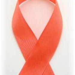 Pink Salmon Vintage Ribbon