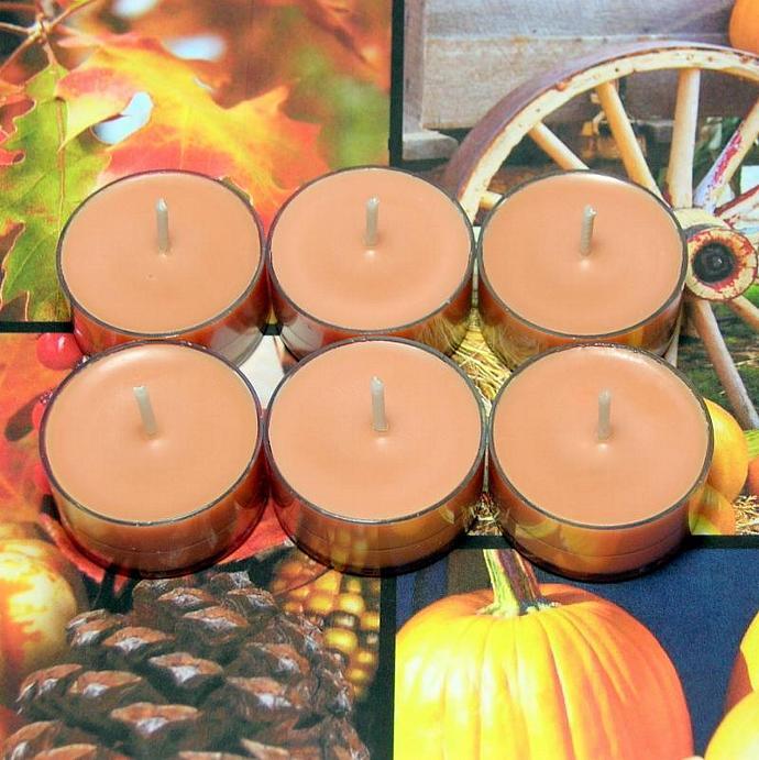 Autumn Spice PURE SOY Tea Lights (Set of 6)