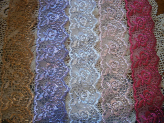 Embroidered lace trim (2yds)