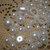 White flatback pearls (50)