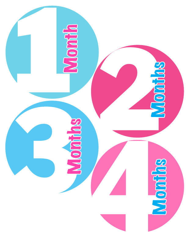 Monthly Stickers - Baby Month Stickers - Aqua Blue & Pink Baby Month Stickers -