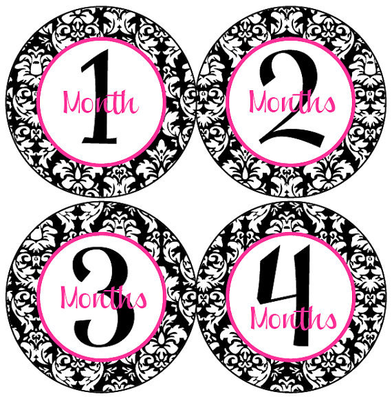 baby month stickers baby girl monthly getthepartystarted