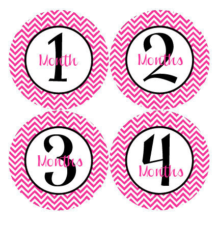 baby month stickers baby girl monthly by getthepartystarted on zibbet