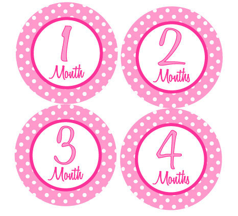 Baby Month Stickers Baby Girl Monthly Milestone Stickers Pink Hot Pink Milestone