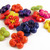 Colorful flower buttons, set of 6. 20mm round.  2 holes. Your choice of colors.