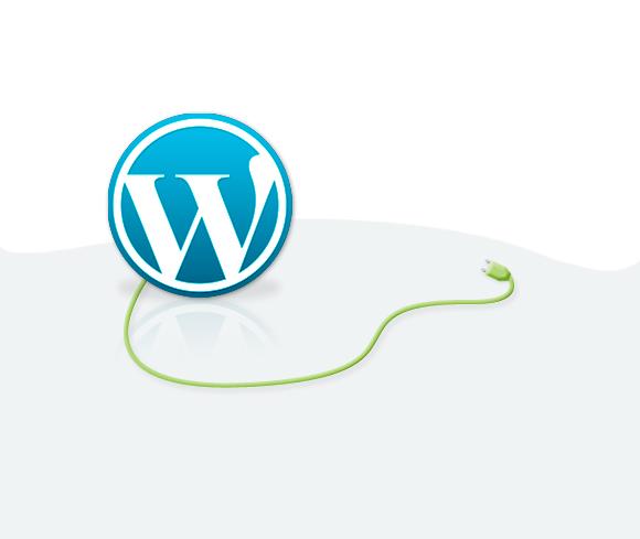 Custom Wordpress Plugin ( extension development )