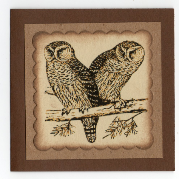 Owl Mini Note Enclosure Cards - Primitive Look