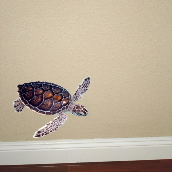 "3 Baby Sea Turtle Decals - Each Turtle is 5"" tall x 5"" wide"