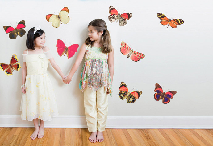 9 Fiery Moth Wall Decals- Sizes Shown in Last Example Image