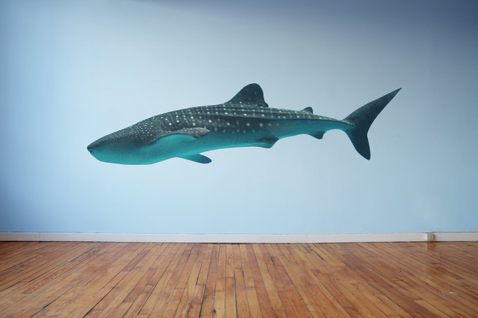"""Large Whale Shark Wall Decal - 15"""" tall x 50"""" wide"""
