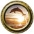 Dolphin Sunset Porthole Vinyl Wall Decal