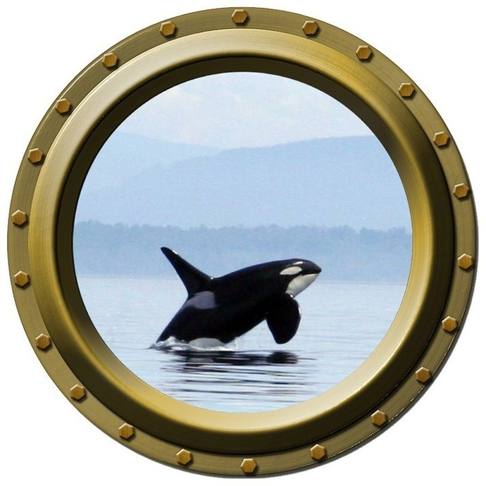 Orca Killer Whale Design Two Porthole Wall Decal