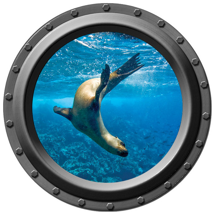 Underwater Seal Porthole Wall Decal