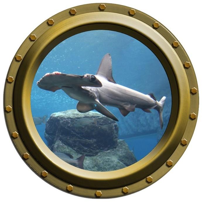 Hammerhead Shark Design 3 Porthole Wall Decal