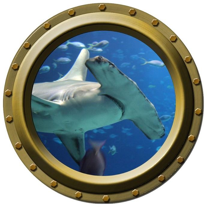 Hammerhead Shark Design 1 Porthole Wall Decal