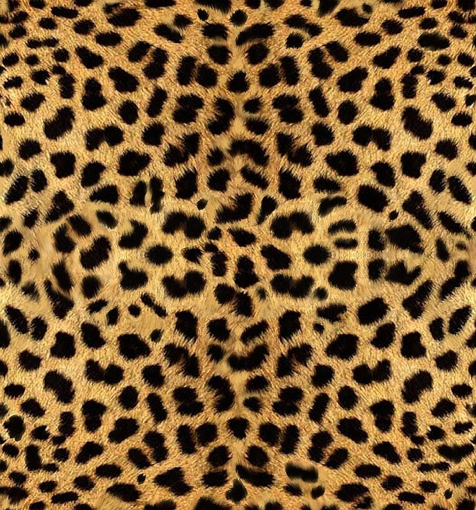 "Cheetah Print Name Decal - CUSTOMIZE  - 4"" tall Letters x Length Based on Name"