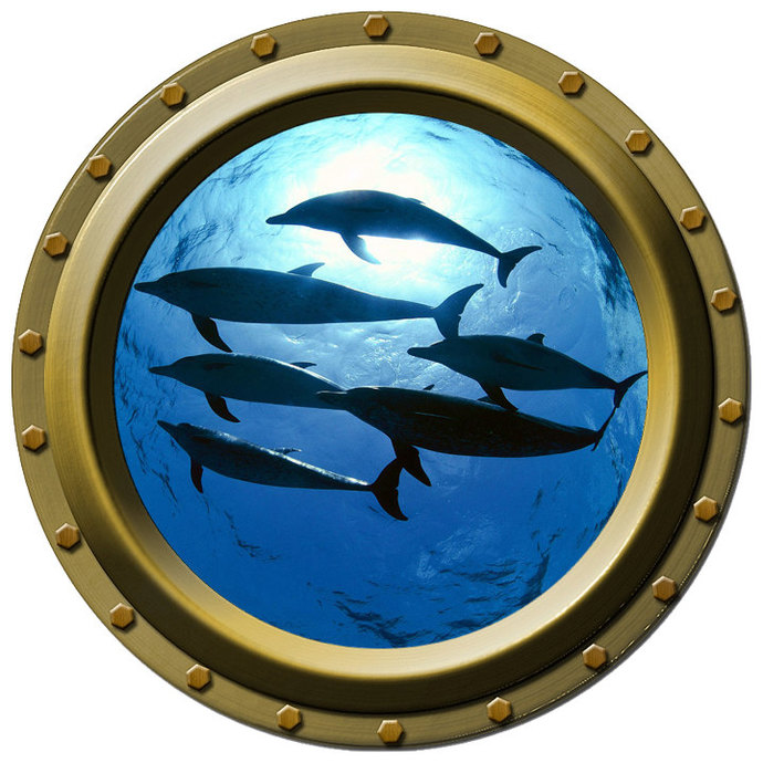 Pod of Dolphins Porthole Wall Decal