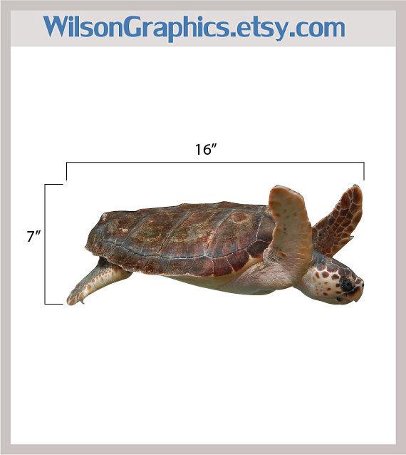 "Loggerhead Sea Turtle Sea Life Vinyl Decal - 7"" tall x 16"" wide"
