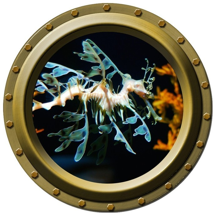 The Sea Dragon Porthole Wall Decal