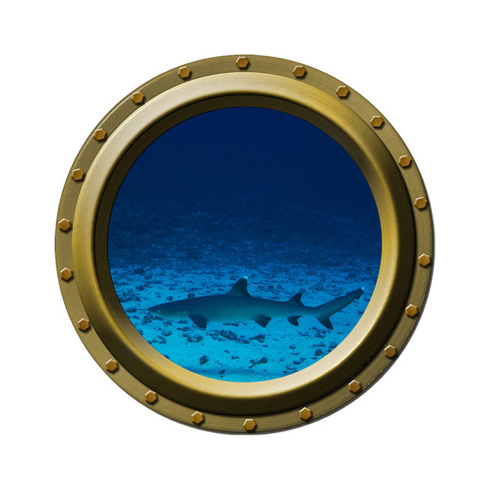 White Tipped Reef Shark Porthole Wall Decal
