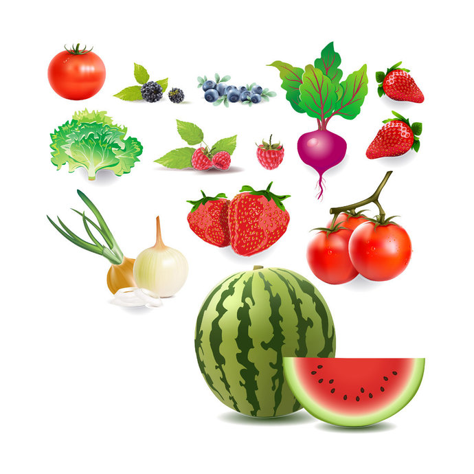 14 Produce Decals Set - Sizes Shown on Second Listing Image