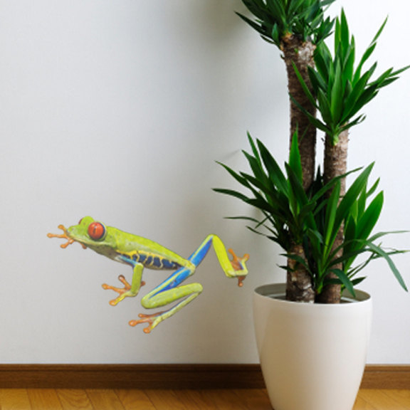 """Red Eyed Tree Frog WallDecal - 10.5"""" tall x 18"""" wide"""